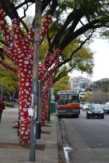 Trees covered in polka dots outside the MALBA to celebrate Kusama's exhibit